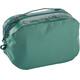 Patagonia Black Hole Cube Toiletry Bag Medium Beryl Green